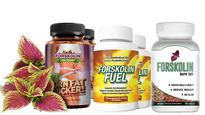 Forskolina: El secreto para perder peso