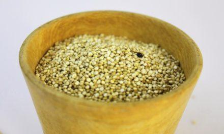 Beneficios del amaranto para la salud