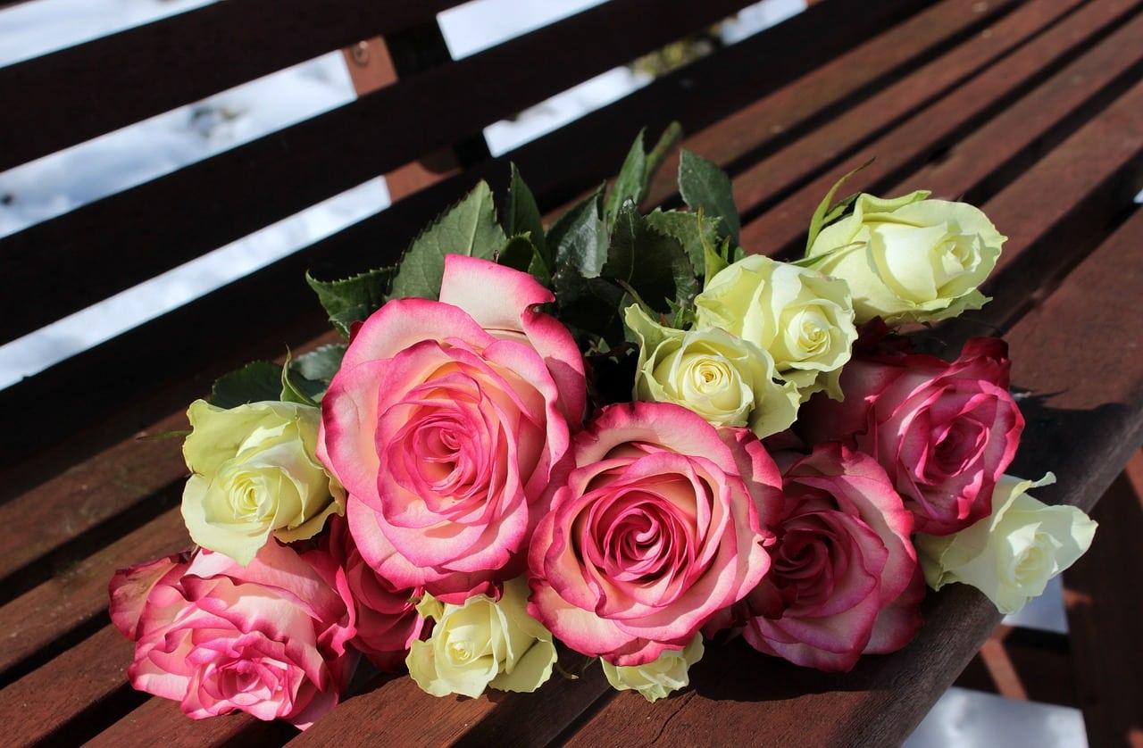 Qué flores regalar en el día de la madre
